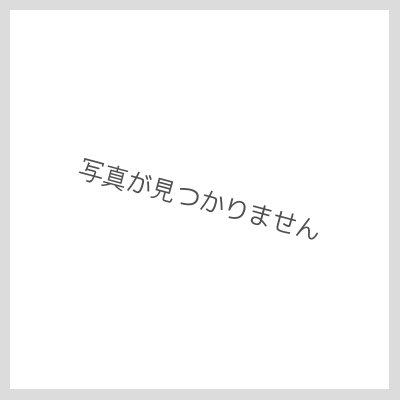 画像3: 天然牛角印鑑 銀行印12mm丸