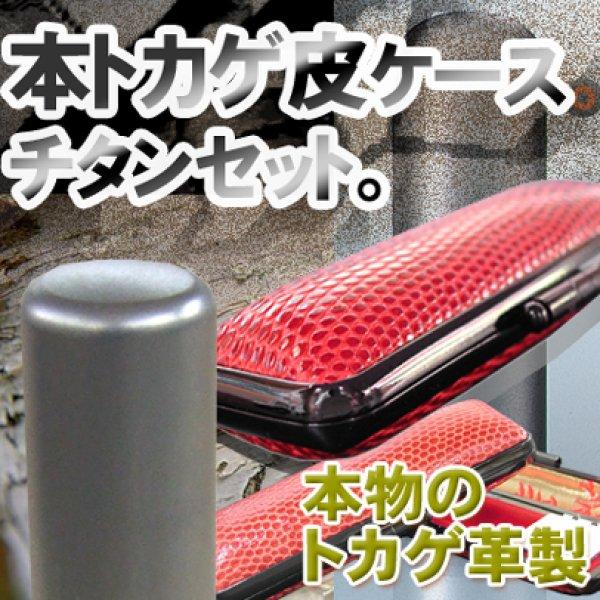 画像1: チタン実印用印鑑 16.5mm丸【高級トカゲ皮ケース付】 (1)