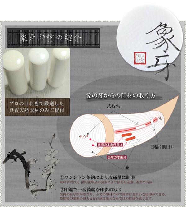 象牙印材の紹介